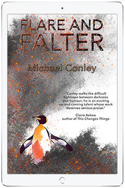 Michael Conley, Flare and Falter (eBook Cover)