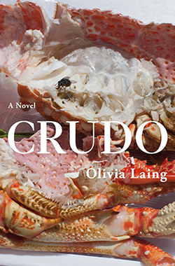 Olivia Laing, Crudo